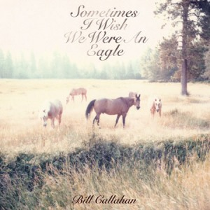Bill Callahan's Sometimes I Wish We Were an Eagle