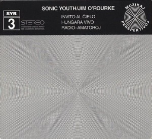 Sonic Youth's SYR3